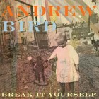 Andrew-Bird-Break-It-Yourself-cos